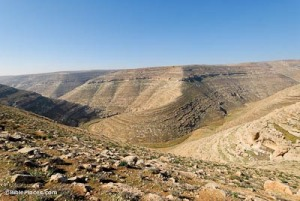 nahal-arugot-from-east-tb021107514-bibleplaces